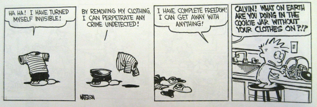 Calvin invisible blog