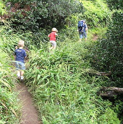 Aiea hike blog1