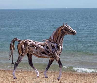 Driftwood horse beach
