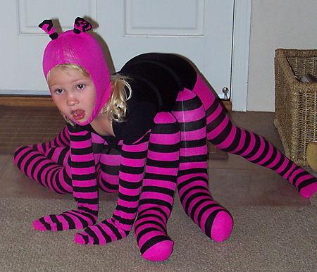 Eliza spider