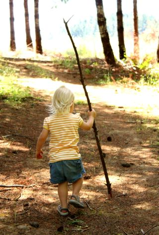 Hazel's walking stick