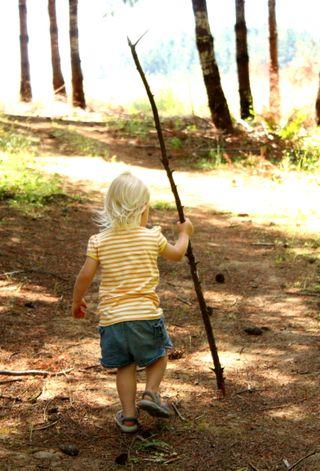 Hazel's walking stick