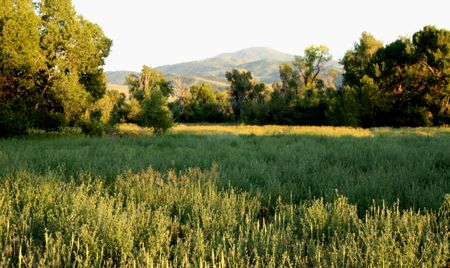 Huntsville landscape