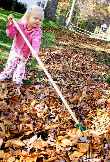 Hazel raking leaves2