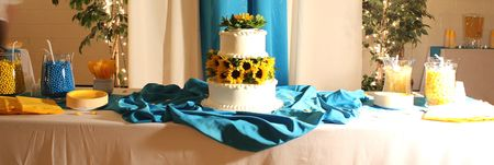 Cake table wide view