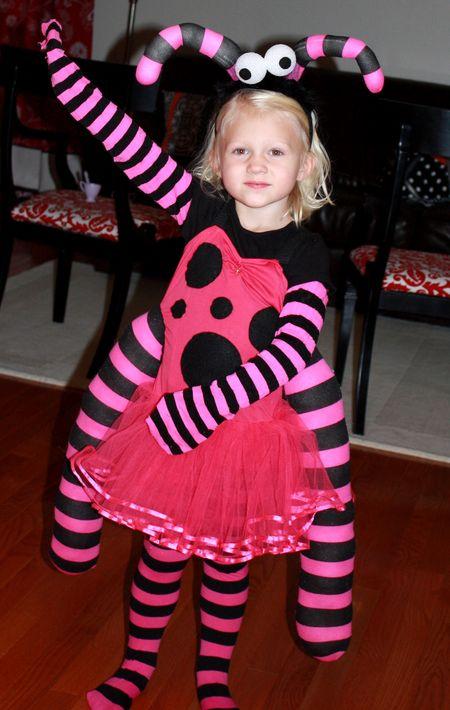 Hazel bug3