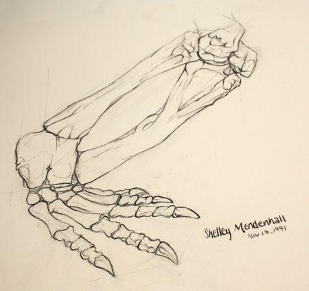 Dinosaur foot