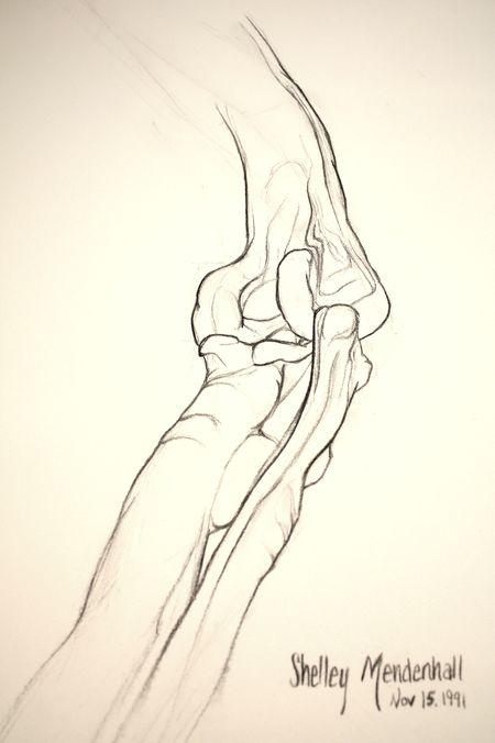 Dinosaur knee joint