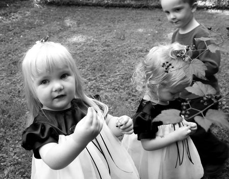 Kids picking berries2
