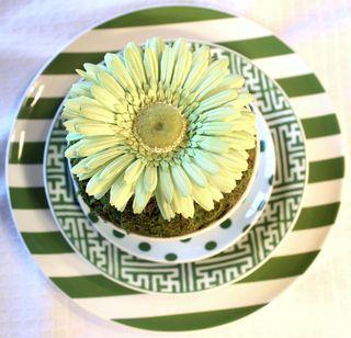 Green-plates