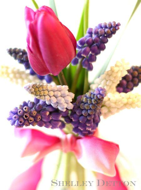 Tulip-bouquet5named