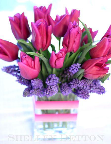 Tulip1named