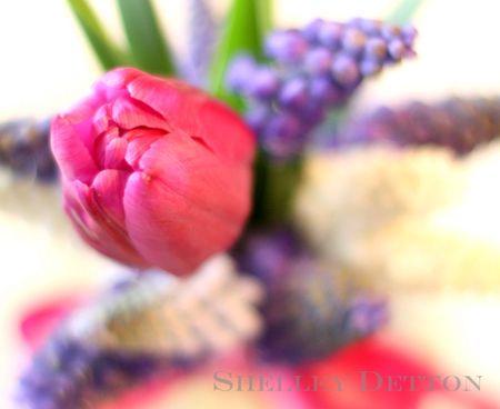 Tulip-bouquet2named