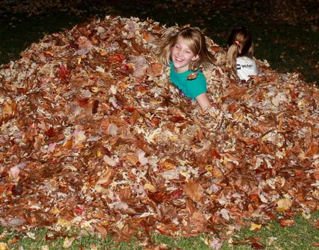 Eliza in leaves