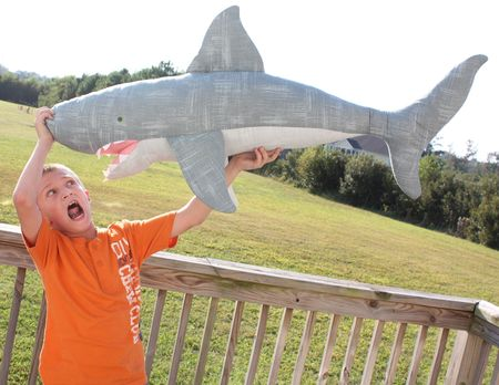 Hyrum, shark3