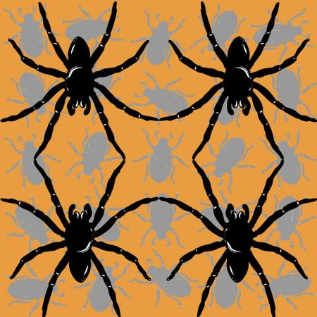 Spider-Dance-for-blog
