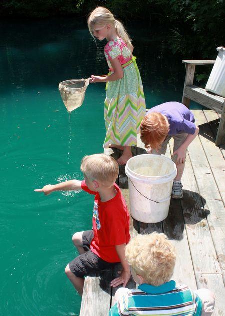 Fish net2