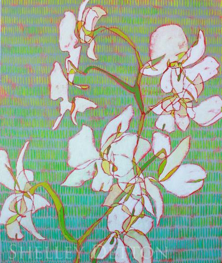 White Orchids copy