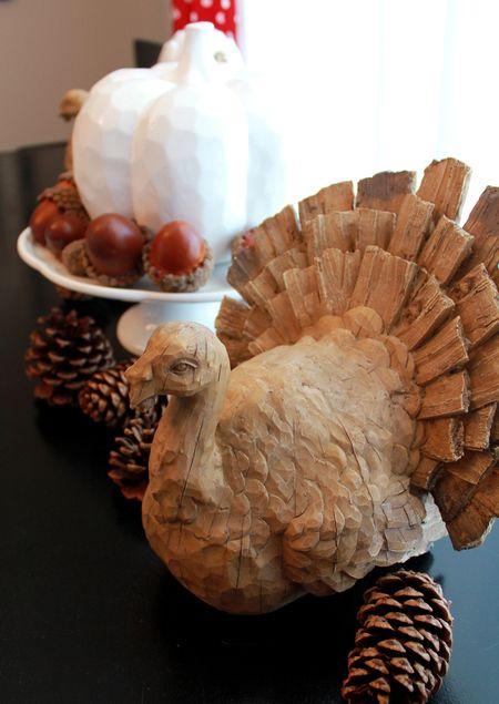 Turkey detail