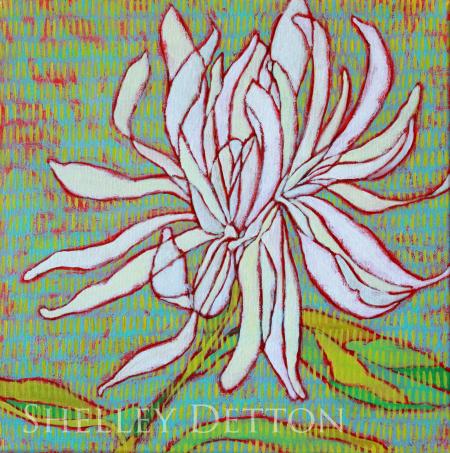 White Dahlia copy
