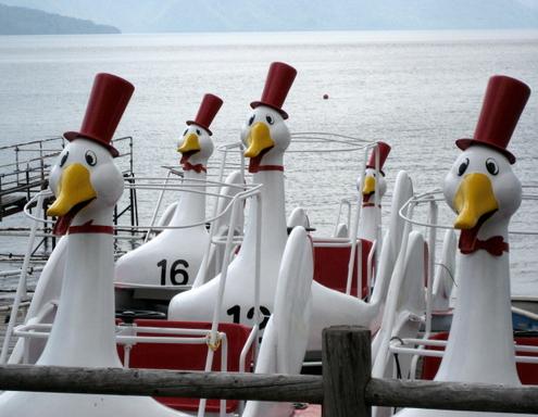 Lake_geese_blog_3